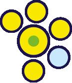 gialli-verdi-azzurri-2
