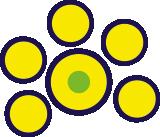 Cerchi Gialli e Verdi AEquacy